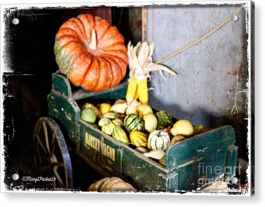Thanksgiving  Harvest      Acrylic Print