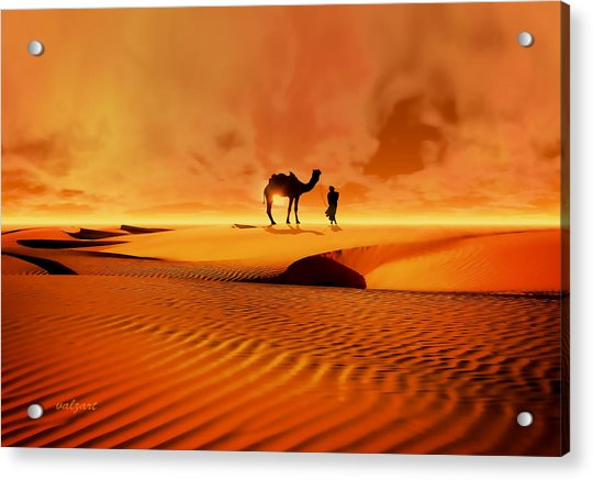 Acrylic Print featuring the photograph The Bedouin by Valerie Anne Kelly