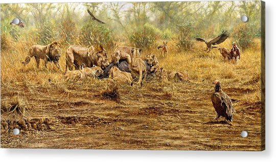 Acrylic Print featuring the painting The Kill by Alan M Hunt
