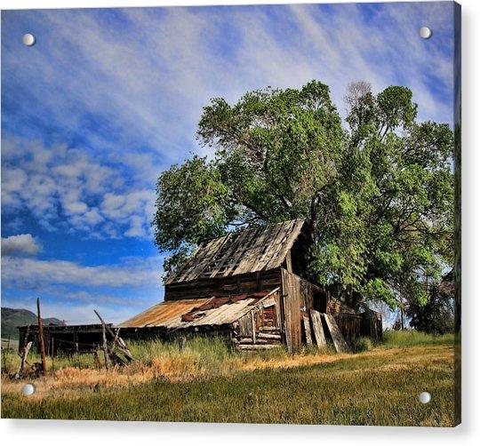 The Old Barn Acrylic Print by Gene Praag