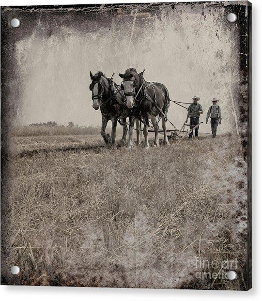 The Original Horsepower Acrylic Print