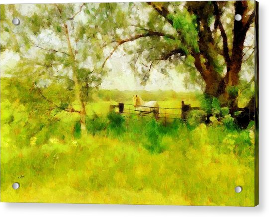 Acrylic Print featuring the painting The Paddock by Valerie Anne Kelly