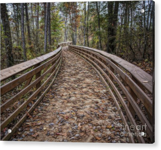 The Path That Leads Acrylic Print
