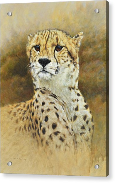 Acrylic Print featuring the painting The Prince - Cheetah by Alan M Hunt