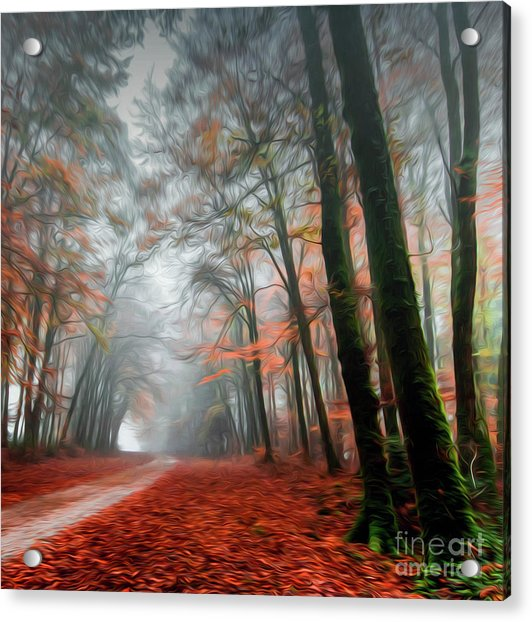 The Red Path Acrylic Print
