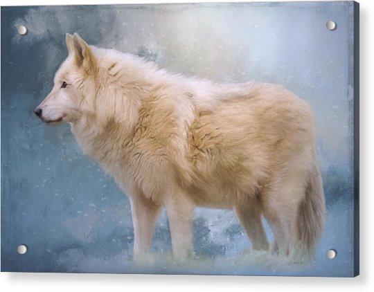 The Spirit Within - Arctic Wolf Art Acrylic Print