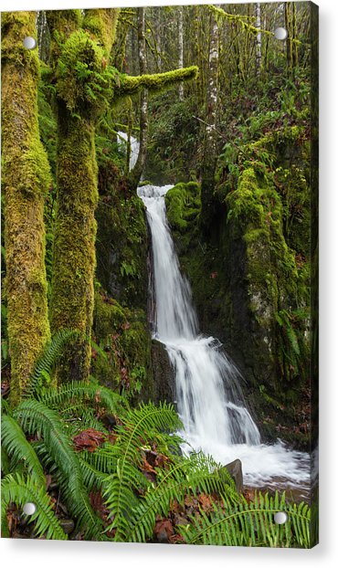 The Water Staircase Acrylic Print