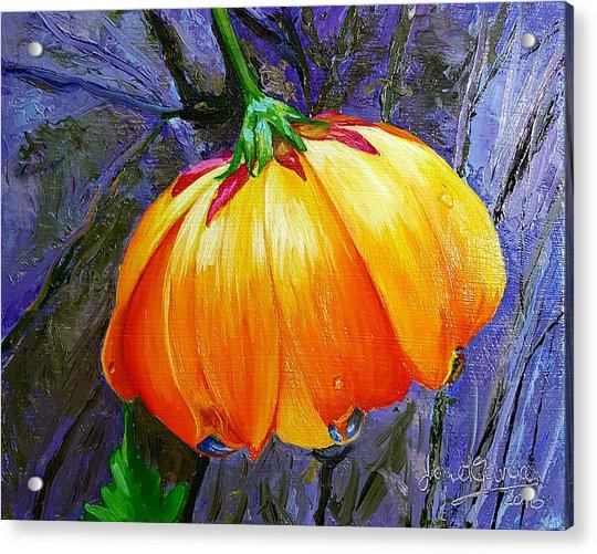 The Yellow Flower Acrylic Print