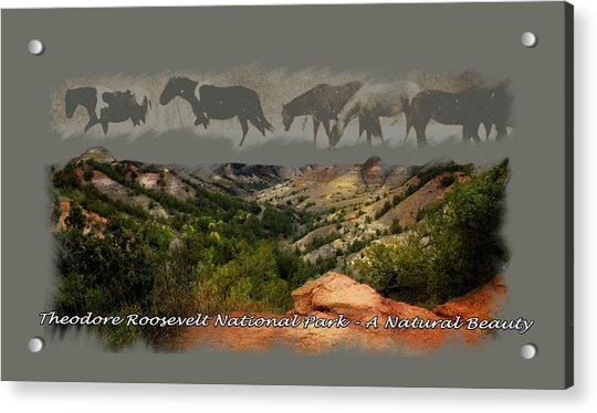 Theodore Roosevelt National Park Acrylic Print