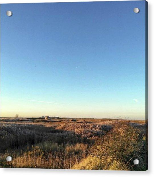 Thornham Marsh Lit By The Setting Sun Acrylic Print