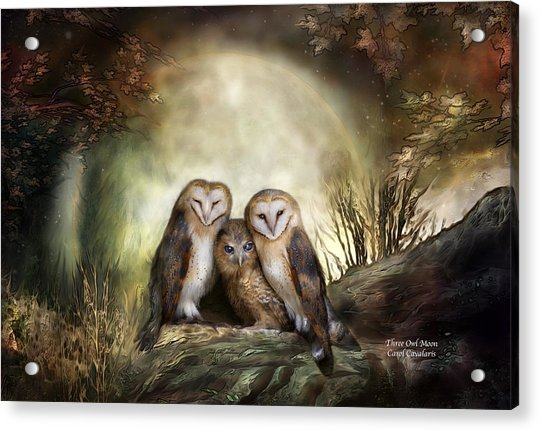 Three Owl Moon Acrylic Print
