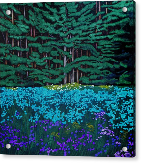 Threshold Of The Woods Acrylic Print