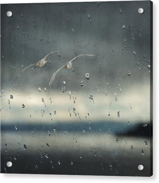 Acrylic Print featuring the photograph Together In The Rain by Sally Banfill
