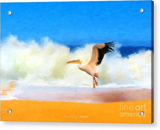 Touch Down Acrylic Print