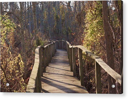 Trail Bridge Acrylic Print