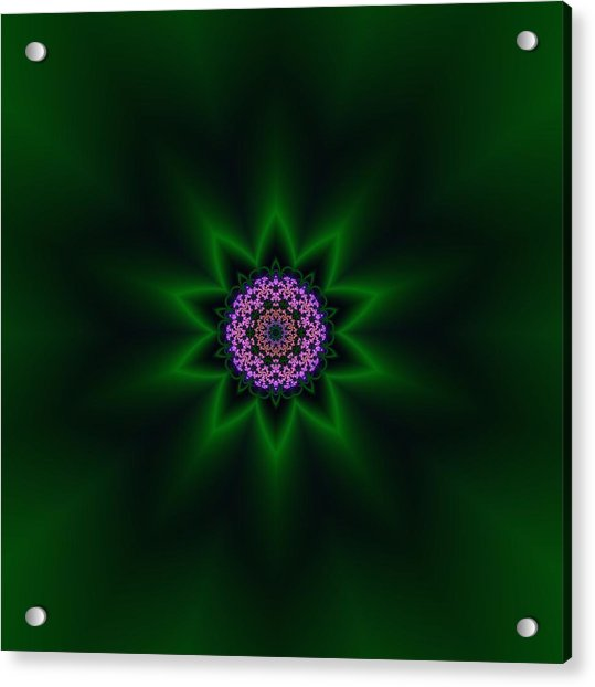 Acrylic Print featuring the digital art Transition Flower 10 by Robert Thalmeier