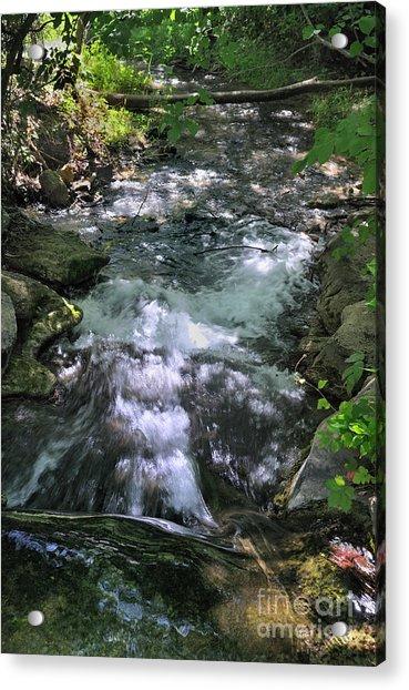 Travertine Creek Acrylic Print
