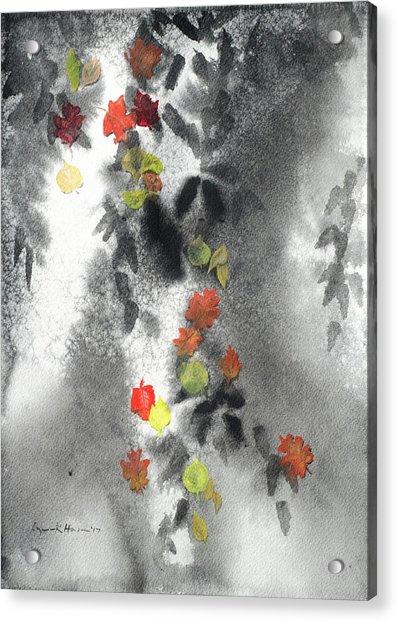 Tree Shadows And Fall Leaves Acrylic Print
