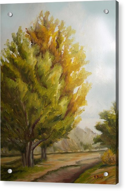 Trees In Boulder Acrylic Print