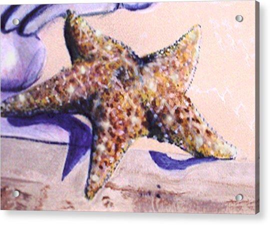 Trompe L'oeil Star Fish Acrylic Print