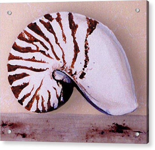 Trompe L'oeil  Acrylic Print