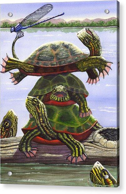 Turtle Circus Acrylic Print