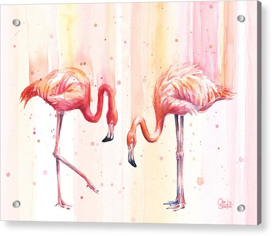 Two Flamingos Watercolor Acrylic Print