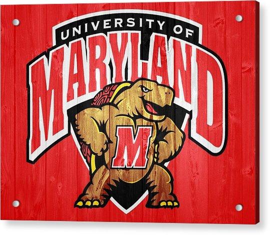 University Of Maryland Barn Door Acrylic Print