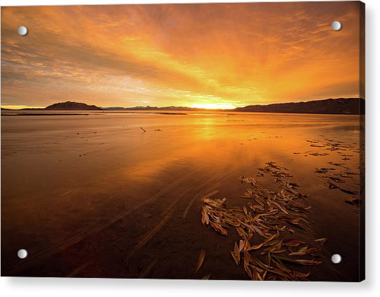 Utah Lake Sunset Acrylic Print