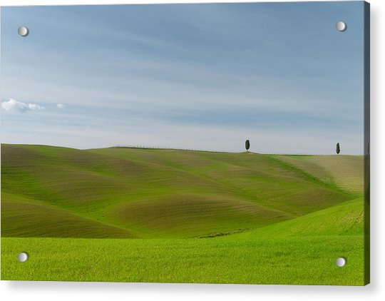 Acrylic Print featuring the photograph Val D'orcia, Toscana by Mirko Chessari
