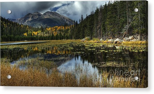 View From Cub Lake Acrylic Print