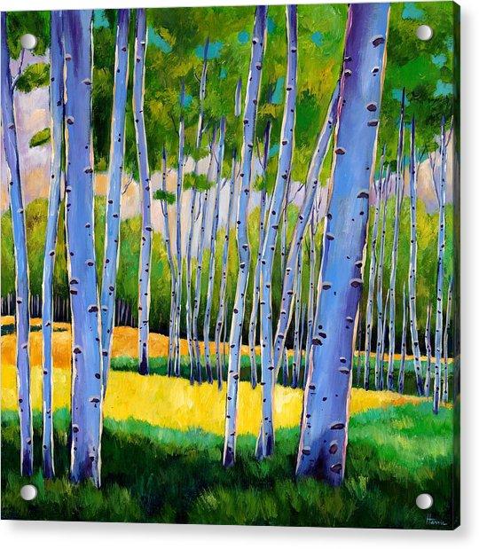 View Through Aspen Acrylic Print