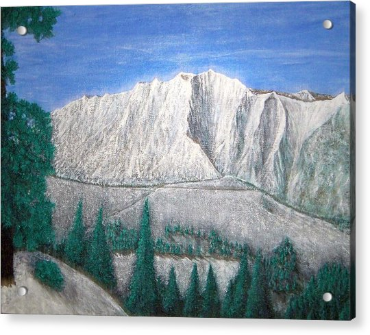 Viewfrom Spruces Acrylic Print