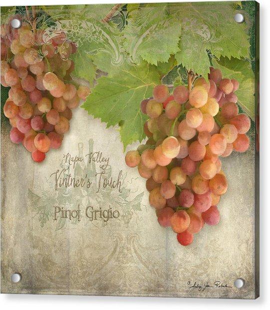 Vineyard - Napa Valley Vintner's Touch Pinot Grigio Grapes  Acrylic Print