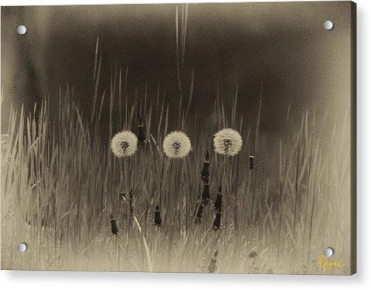 Vintage Clocks Acrylic Print