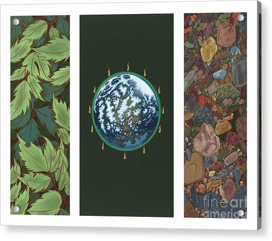 Viriditas Triptych Acrylic Print