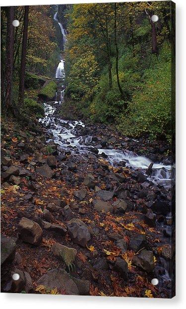 Wahkeena Falls Acrylic Print