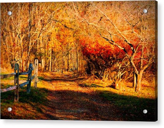 Walking Down The Autumn Path Acrylic Print