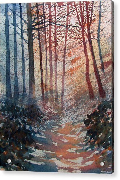 Wander In The Woods Acrylic Print