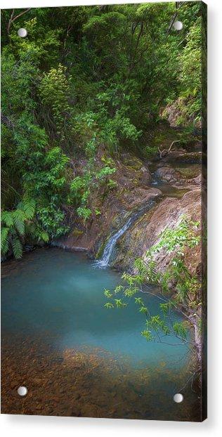 Waterfall Great Barrier Island New Zealand Acrylic Print