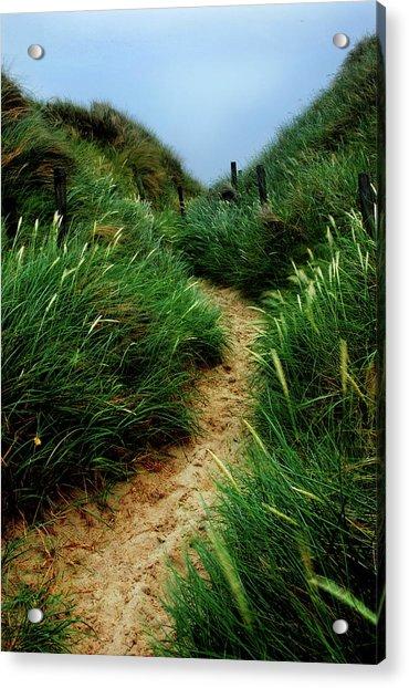 Way Through The Dunes Acrylic Print