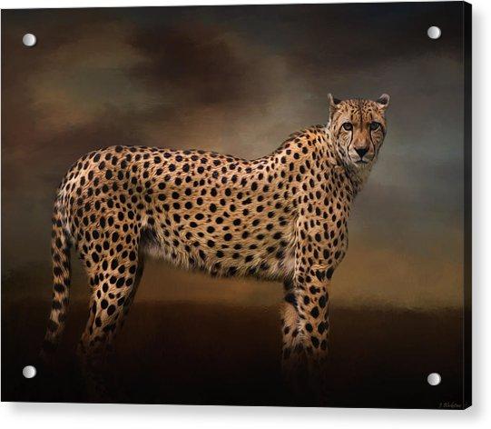 What You Imagine - Cheetah Art Acrylic Print