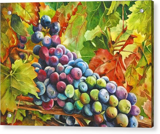 What's Your Grape Acrylic Print