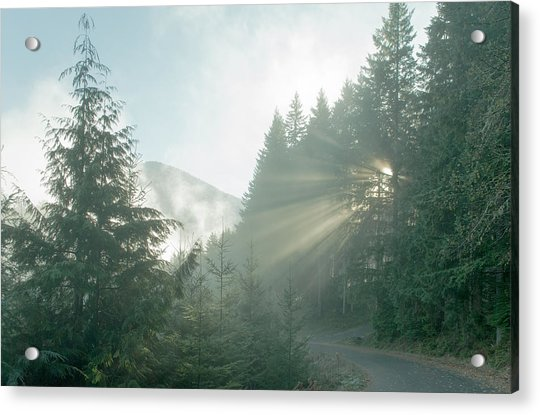 Where Will Your Road Take You? Acrylic Print
