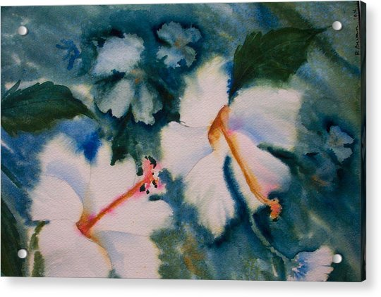 White Hibiscus Acrylic Print by Ruth Bevan