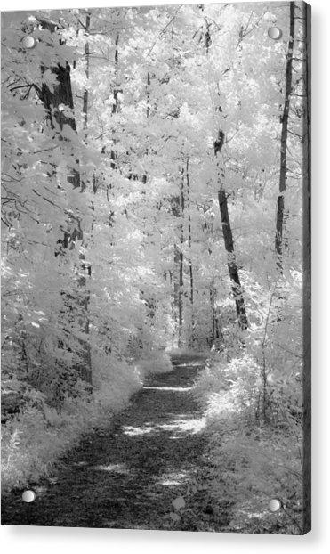 White Path Acrylic Print