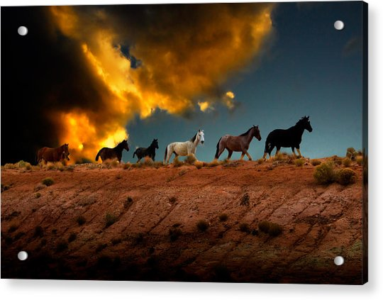 Wild Horses At Sunset Acrylic Print