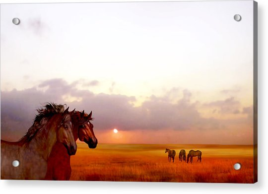 Acrylic Print featuring the painting Wild Moorland Ponies by Valerie Anne Kelly