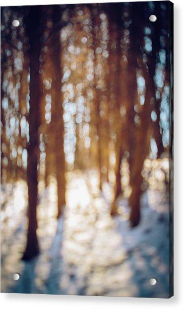 Winter In Snow Acrylic Print