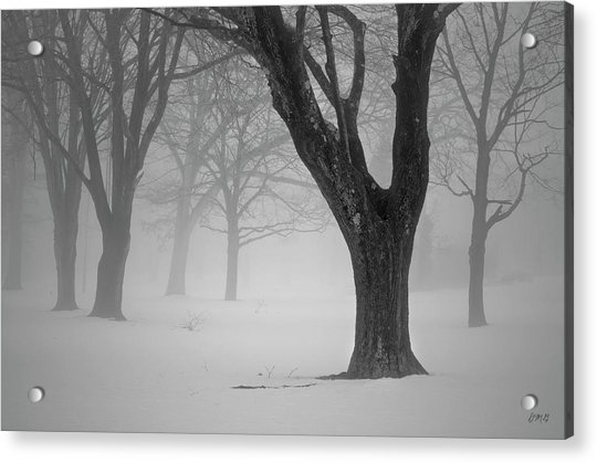 Winter Landscape V Acrylic Print